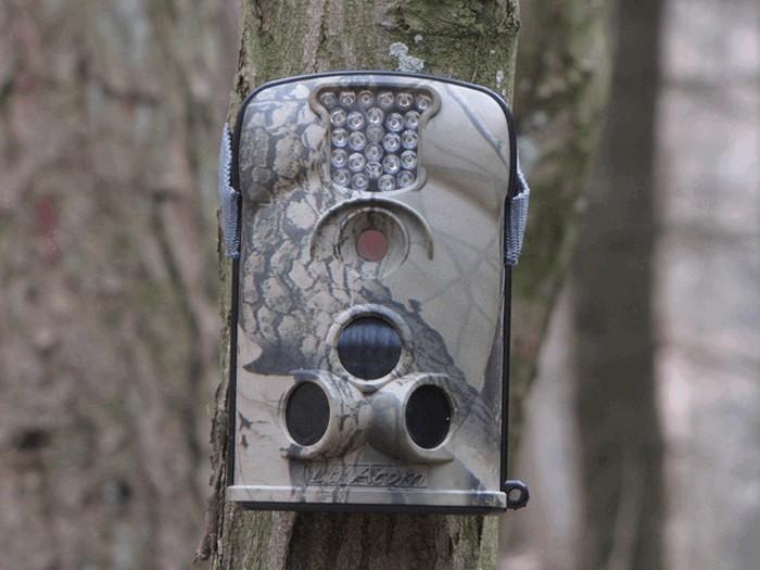 За чистотой в Бобруйске будут следить с помощью фотоловушек