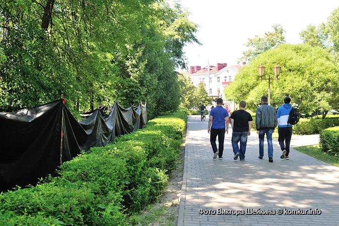 В бобруйском сквере возле гортеатра возобновился поиск останков немецких солдат