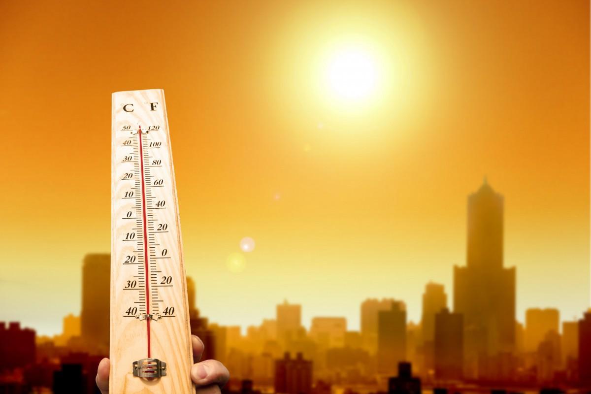 Жара в Бобруйске: сокращенный рабочий день или вентилятор?