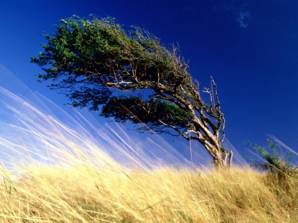 Возможен шквалистый ветер