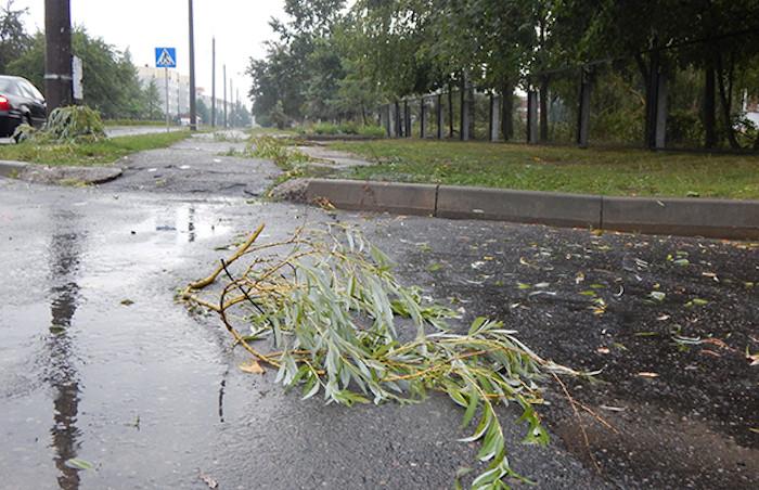 Разгул стихии в Бобруйске