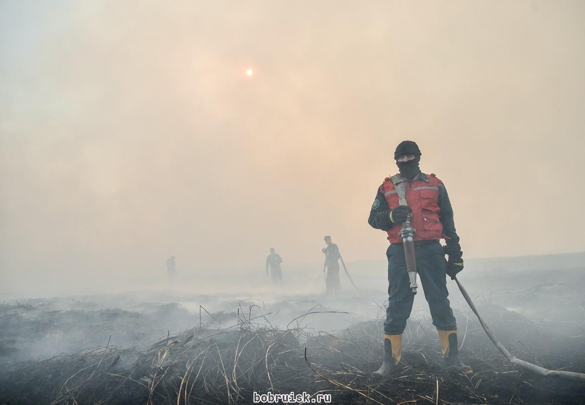 Куда ветер, туда дым: под Бобруйском продолжают тлеть заброшенные поля фильтрации