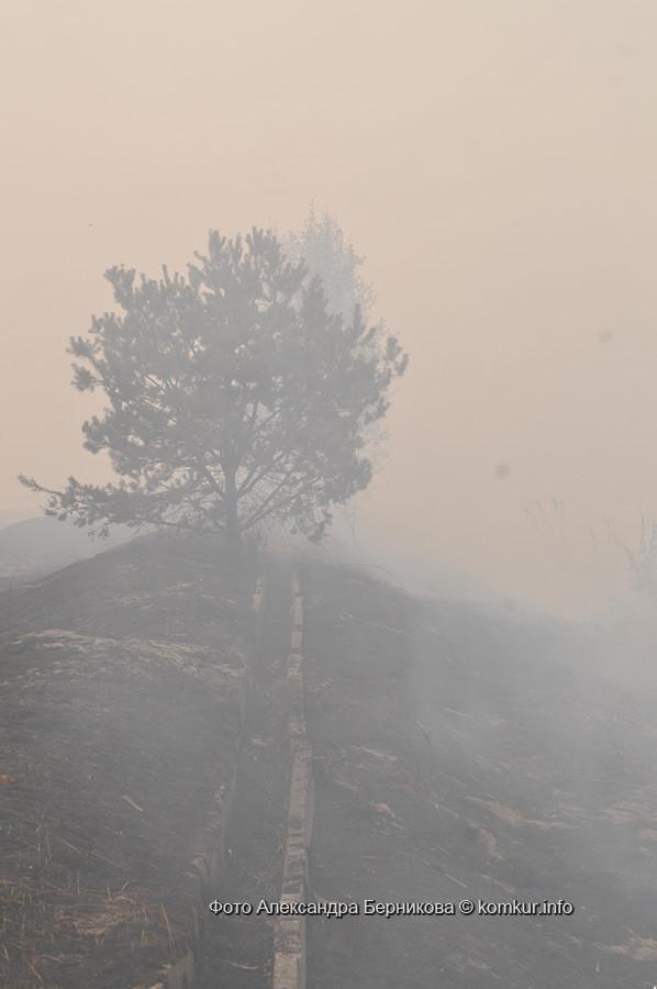 Схватка с огнем продолжается: за сутки удалось потушить один гектар