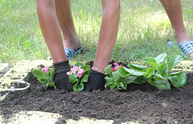 Бобруйчан будут активнее привлекать к благоустройству дворов