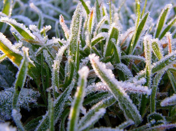 В выходные будет морозно, но без осадков
