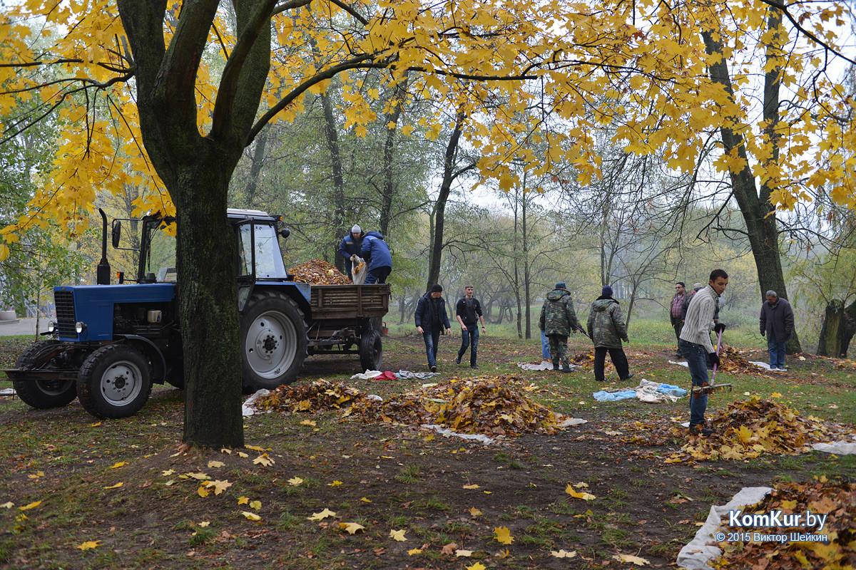 В бобруйском парке снова чистили озера