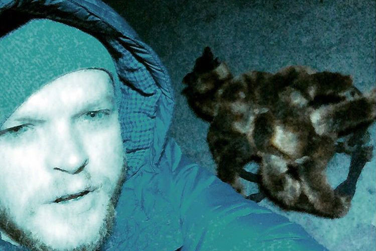 Поляк снова нарядил собаку пауком и довел прохожих до паники