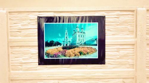 Яркие изображения и необычный формат стали достойным украшением Бобруйска и лучом тепла и радости в эту дождливую погоду.