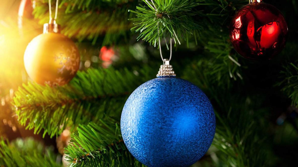 В Бобруйске установят около 30 новогодних ёлок