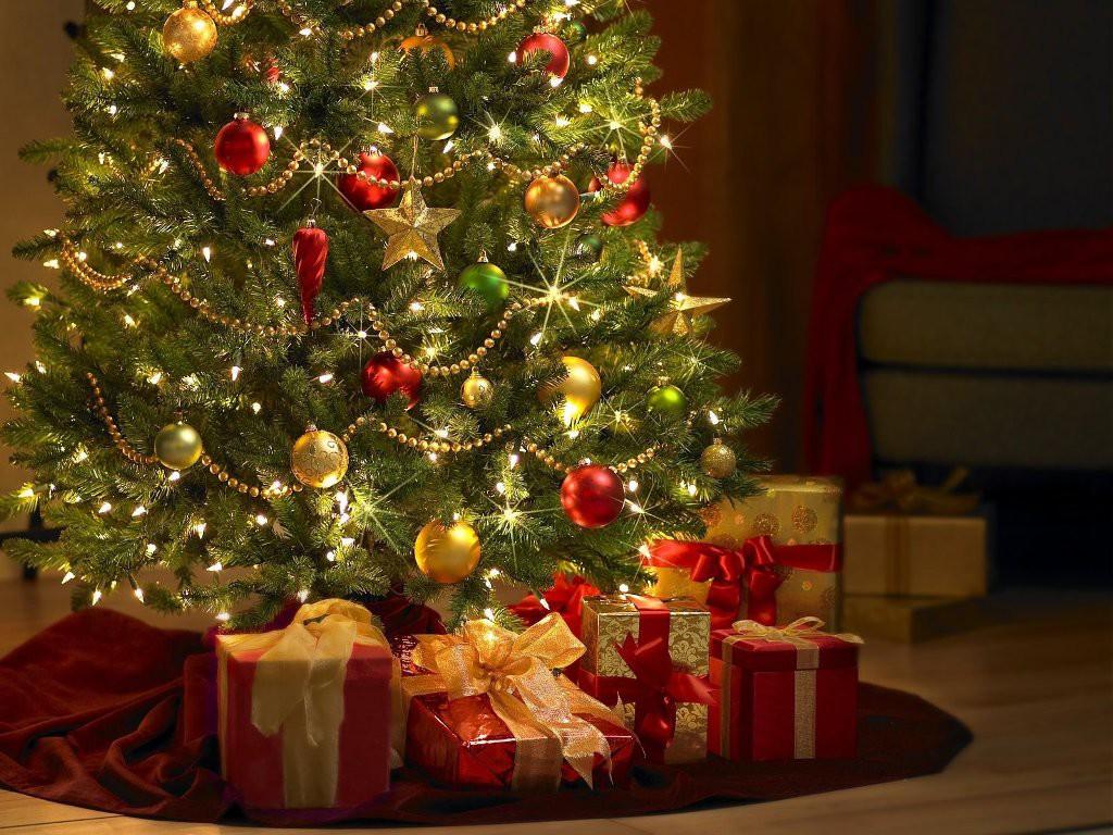 Сладкие подарки и новогодние ёлки в Бобруйске