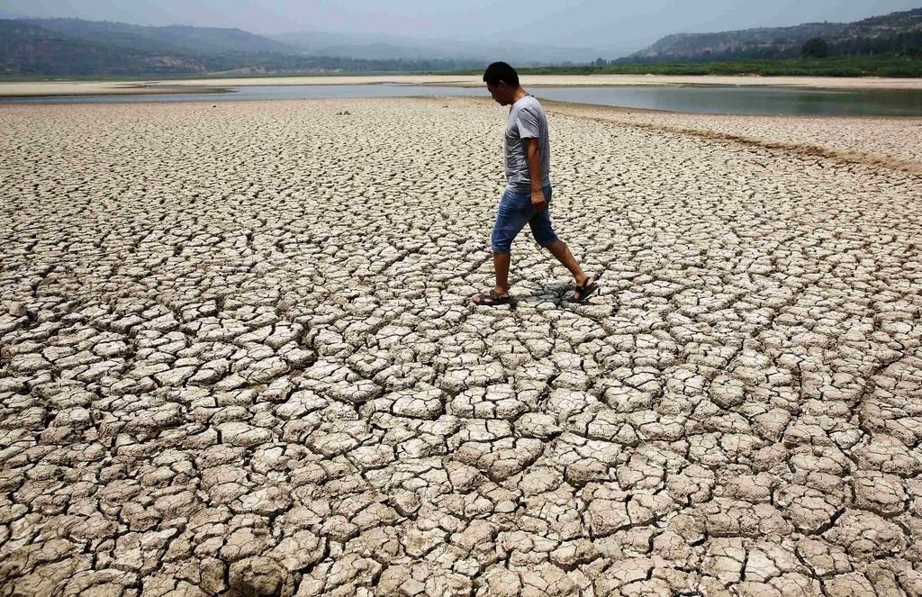 Метеорологи: 2016 год станет самым жарким за всю историю наблюдений