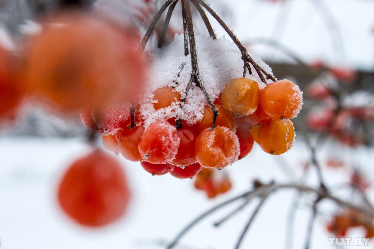 Выходные будут морозными, но с понедельника погода резко начнет меняться