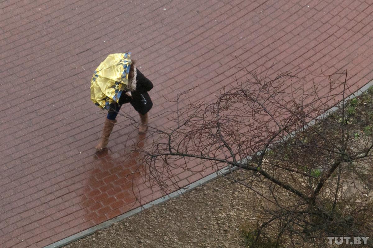 На 10 февраля в Беларуси объявлено штормовое предупреждение из-за шквалистого ветра