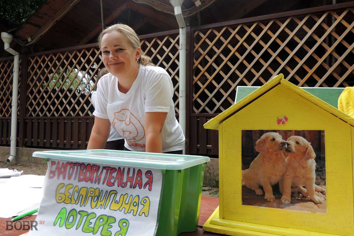 В Бобруйске прошла благотворительная акция в помощь бездомным животным