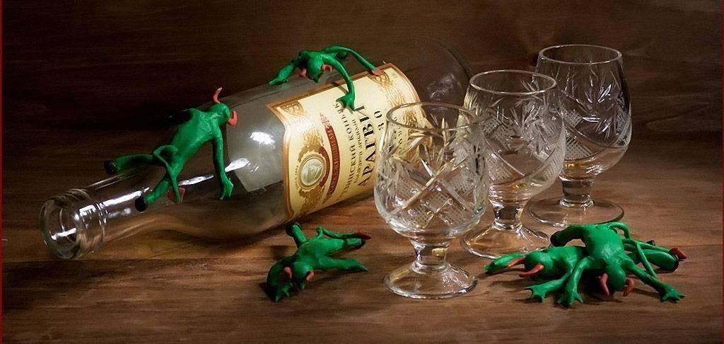 Свыше трех тысяч хронических алкоголиков живет в Бобруйске