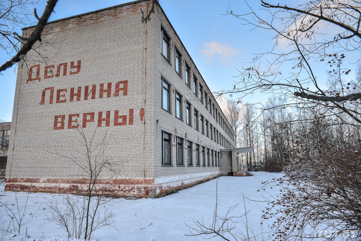 В Бобруйском районе за связь с несовершеннолетней задержан 56-летний председатель сельсовета