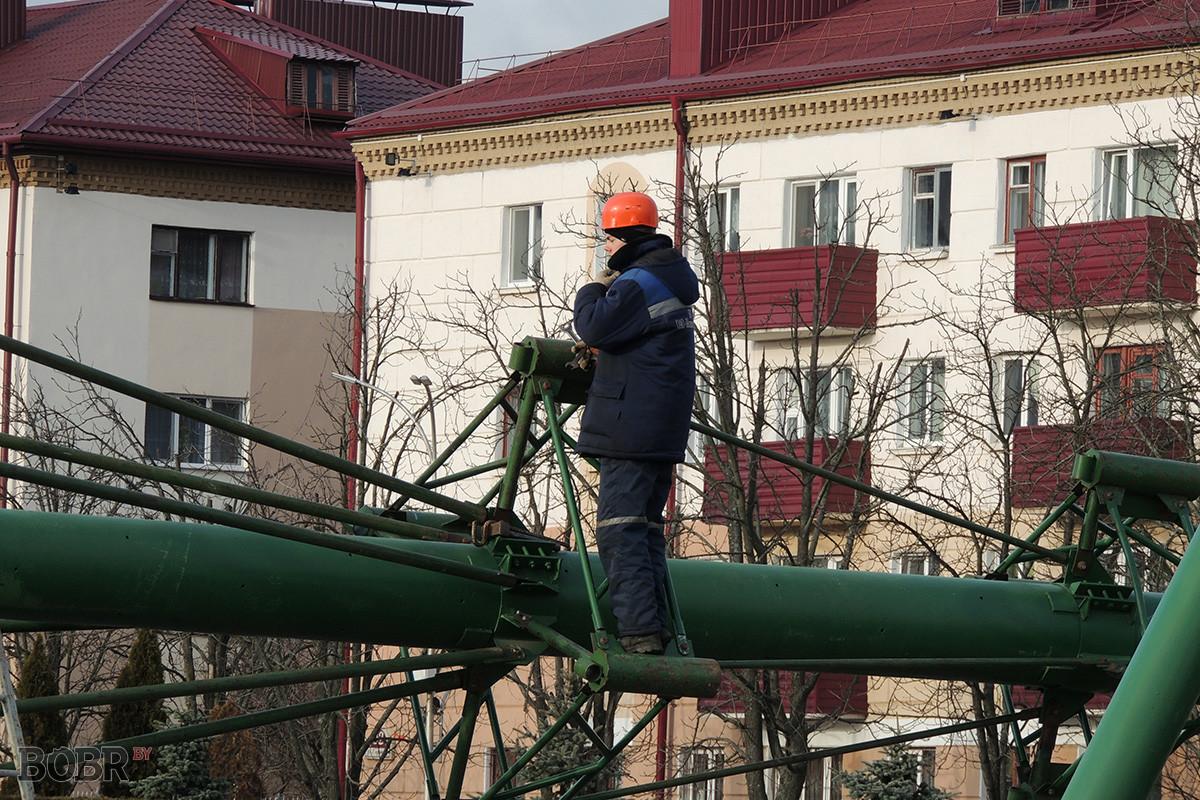В Бобруйске начался монтаж главной новогодней ёлки