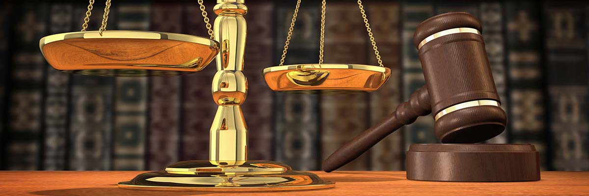 Директор одного из предприятий Бобруйска обвиняется в совершении преступлений коррупционной направленности