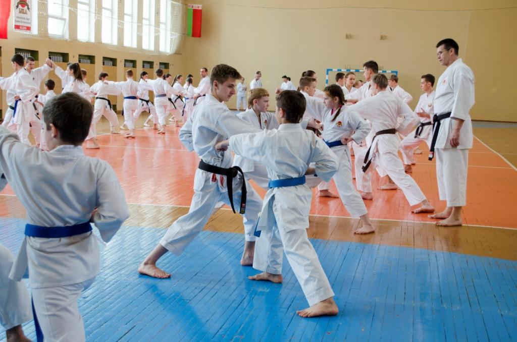 18 201320 октября 2013 в дании проходил 6-й кубок мира по каратэ (kwf)