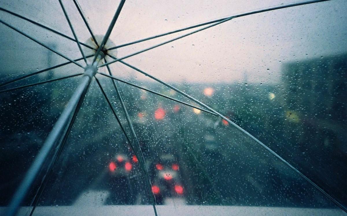 Грозы и шквалистый ветер ожидаются 21 июня в отдельных районах Беларуси