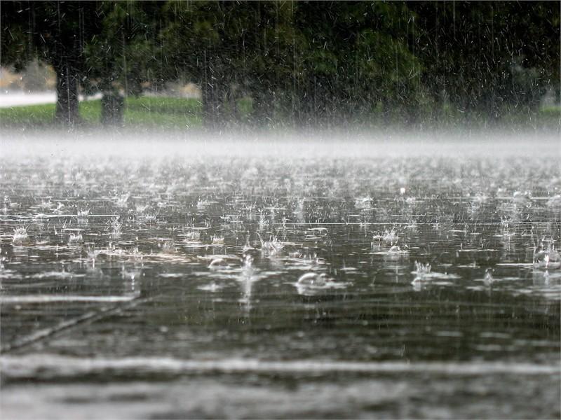 Дождливые выходные, но до +28 прогнозирует Могилевоблгидромет