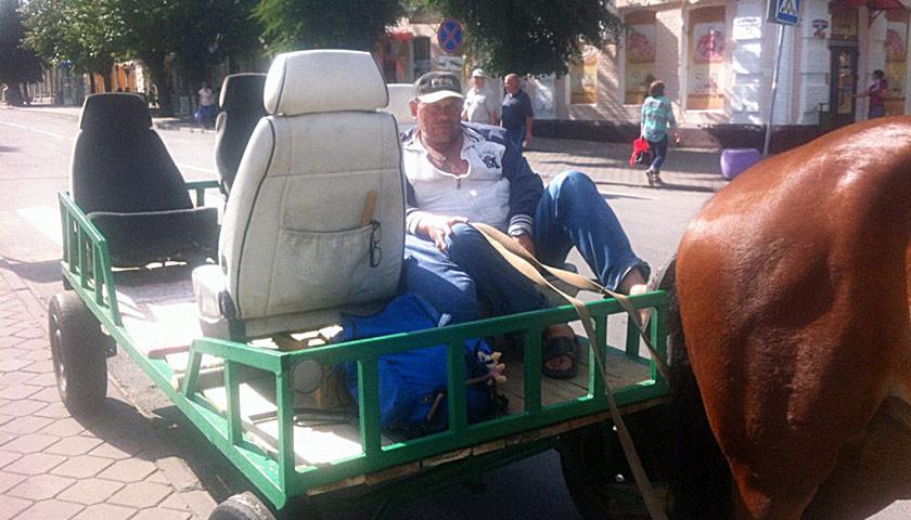 На конном такси — по любимым улицам Бобруйска