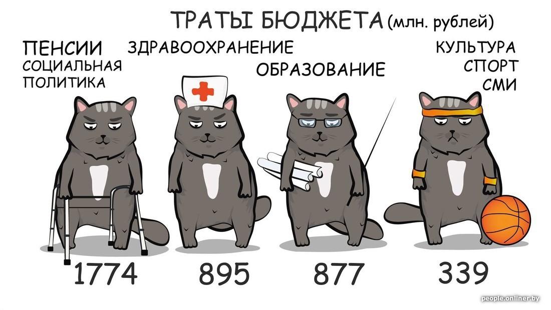 Бюджет и котики. Куда пойдут деньги белорусов в 2018 году?