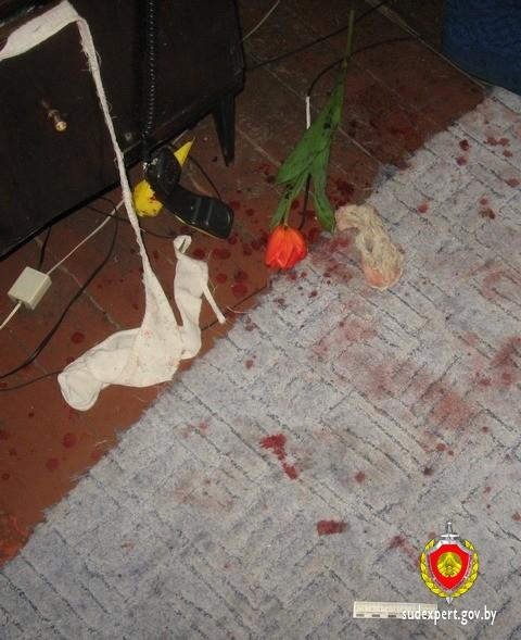 Эксперты помогли раскрыть разбойное нападение на женщину, произошедшее в Бобруйске 8 марта