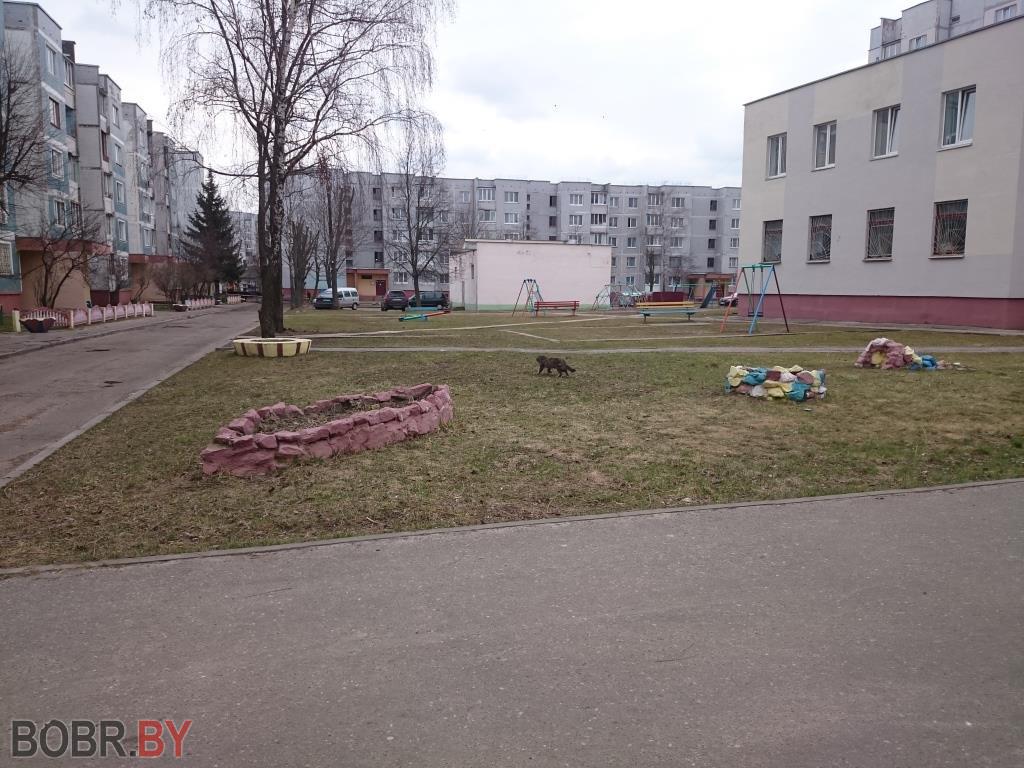 В Бобруйске во дворах пропали все дети
