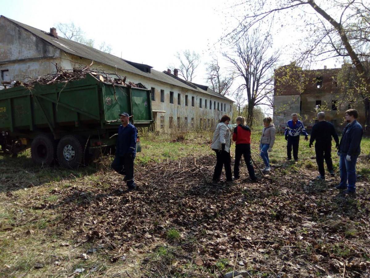 Бобруйчане приняли активное участие в республиканском субботнике