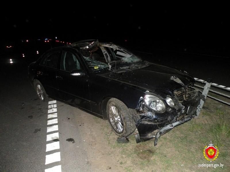 Эксперты помогают устанавливать обстоятельства ДТП, в котором от столкновения автомобиля с лосем погибли два человека