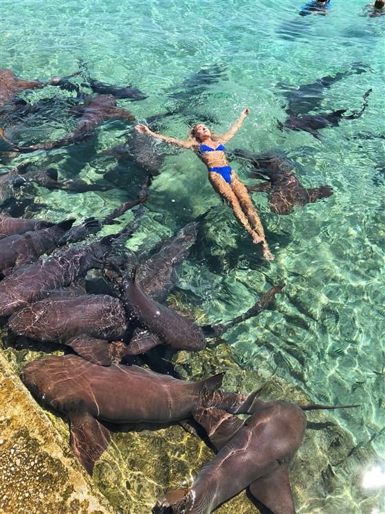 Ради красивого кадра. Модель решила поплавать с акулами и чуть не лишилась руки