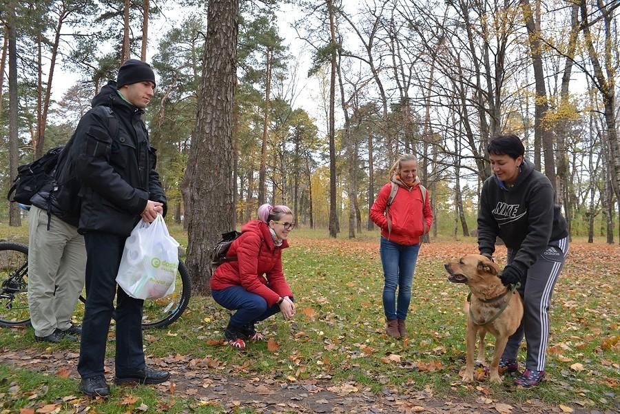 Сколько стоит спасти собаку от смерти на «Спецавтопредприятии»