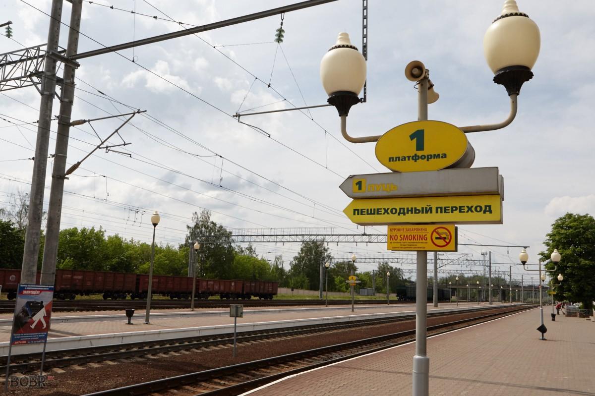 Декада «Дети и безопасность» стартовала в Бобруйске
