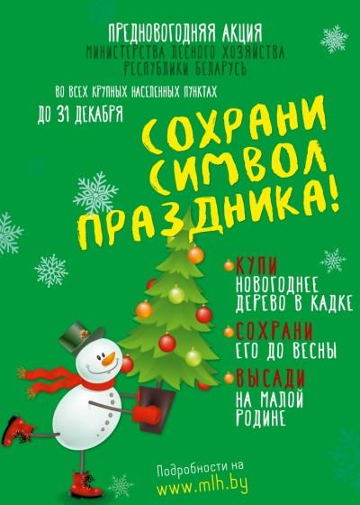 С 21 по 31 декабря в Бобруйске пройдет акция «Сохрани символ праздника»
