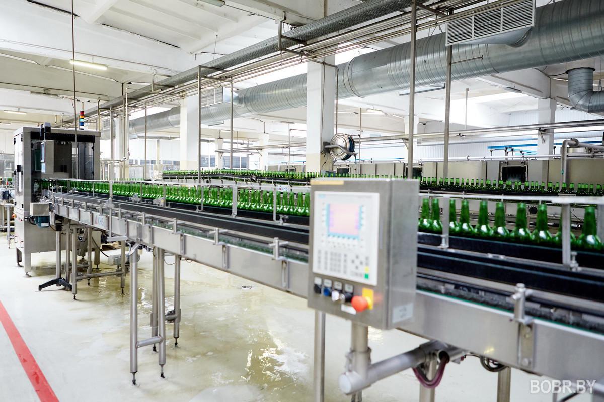 Крупнейшим налогоплательщиками Могилева стали энергетики, Бобруйска – пивовары