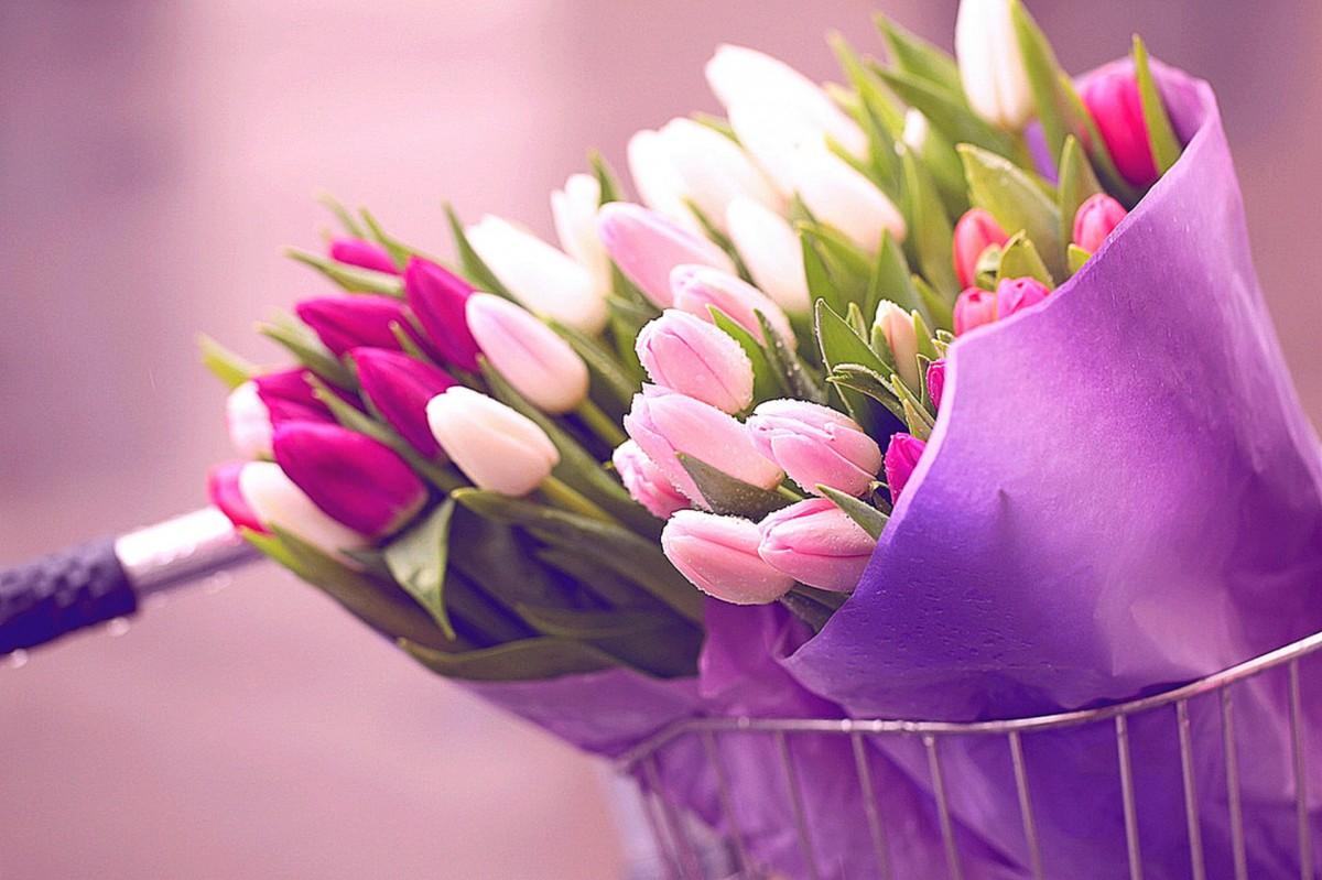 В Бобруйске к 8 Марта организуют 19 площадок по реализации цветов