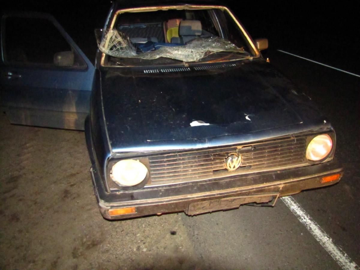 В Бобруйском районе Volkswagen сбил пешехода
