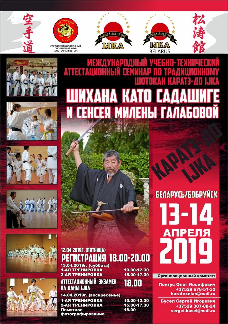 Семинар по традиционному шотокан карате-до IJKA пройдет в апреле в Бобруйске
