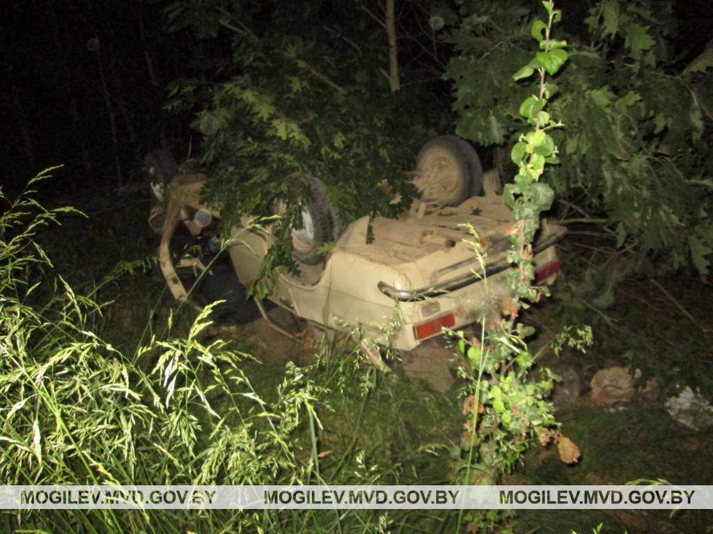 В Бобруйском районе «жигули» вылетели в кювет и опрокинулись: водитель погиб