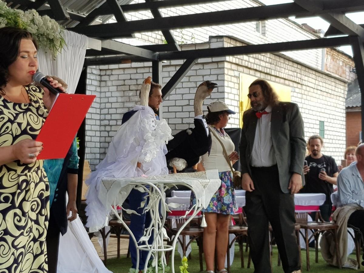 Двое гусей вступили в брак несмотря на запрет минских властей