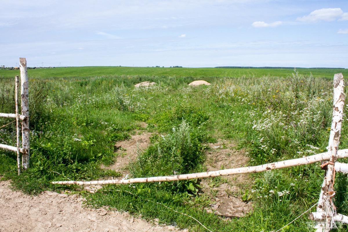 «Помогите!» Работники фермы под Горками показали мертвых телят и тощих коров в навозе