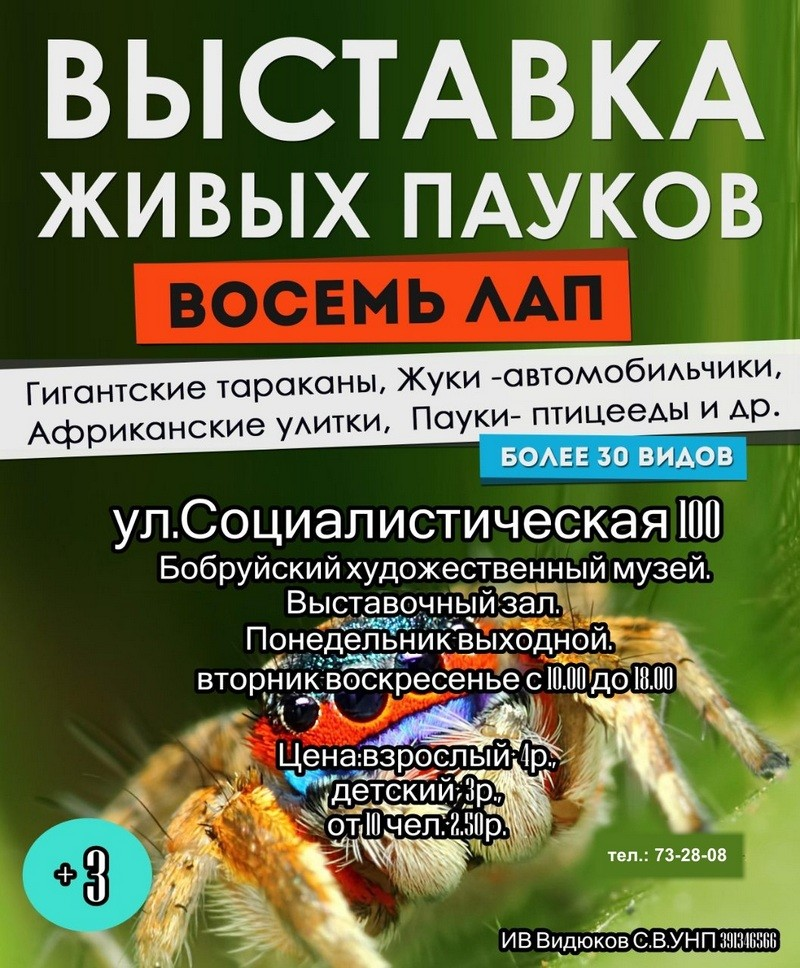 Интересная и познавательная выставка живых экзотические насекомых