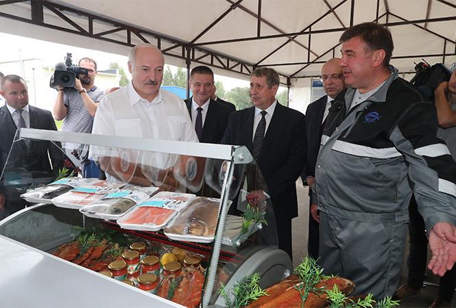 «Мне это производство очень нравится». Лукашенко в форелевом хозяйстве попробовал красную икру и рыбу