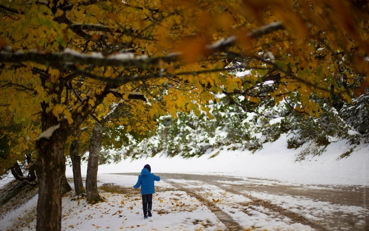 Будет ли нынешняя осень теплой и когда ждать первый снег. Что говорят синоптики и приметы