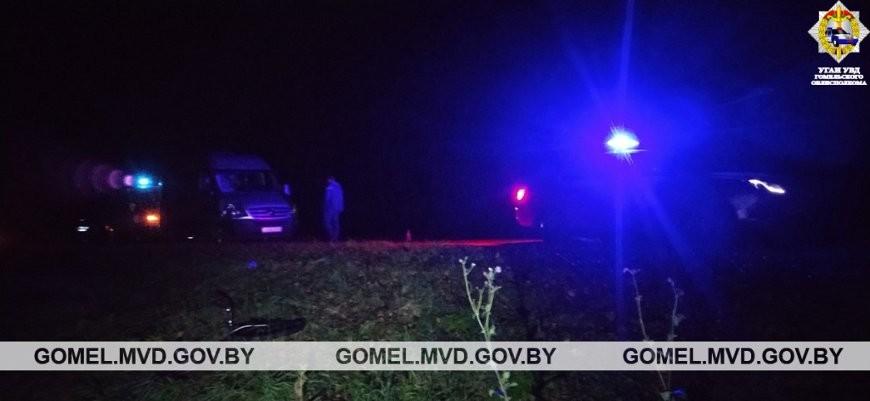 В Рогачевском районе в ДТП погиб пожилой велосипедист, сообщили в УГАИ УВД Гомельского облисполкома.