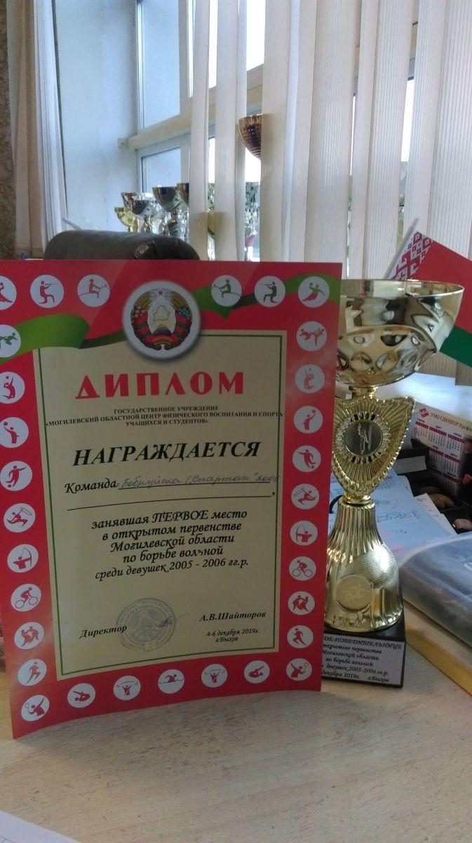 Россыпь медалей и первое командное у бобруйских «вольниц»