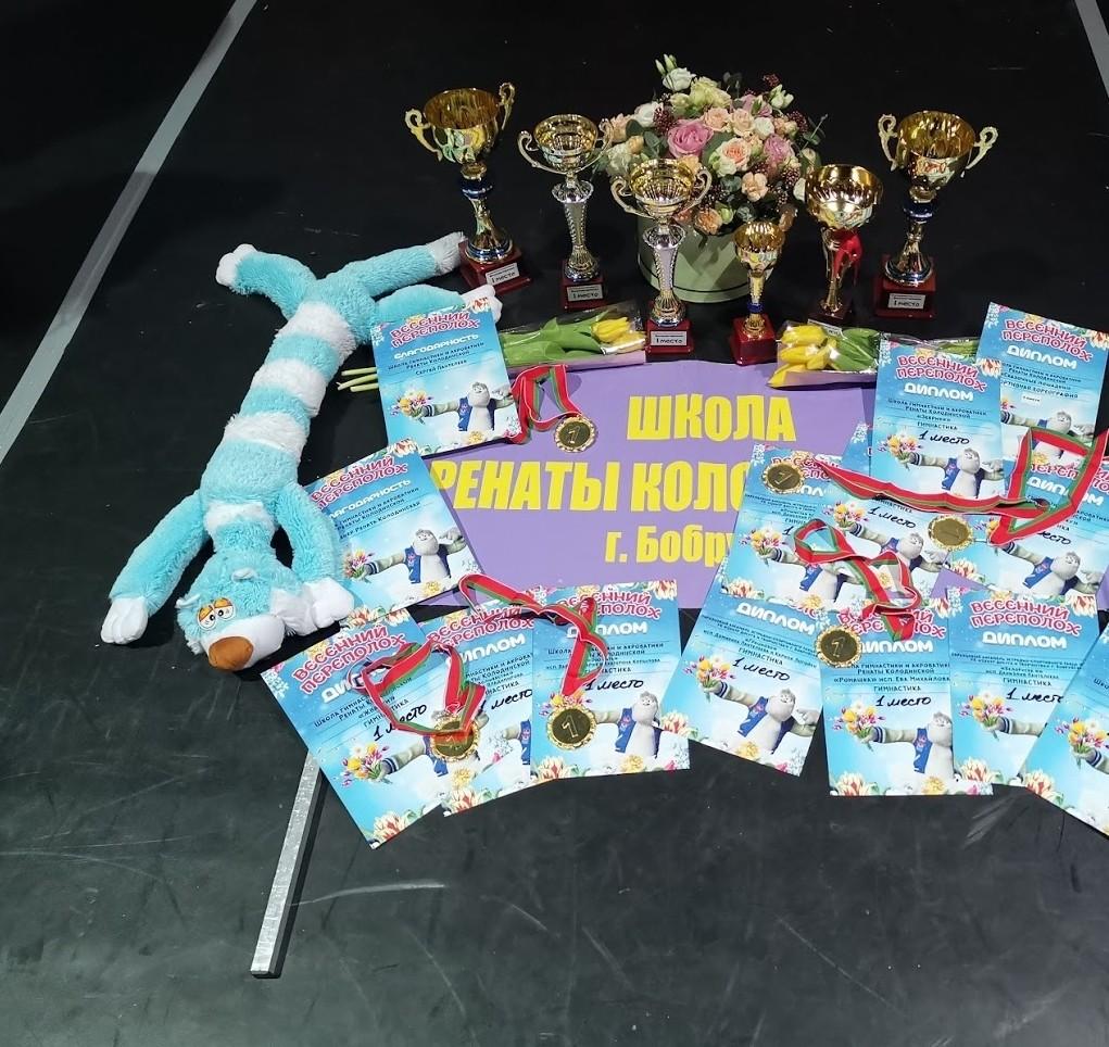 полсотни медалей у бобруйчанок на республиканских соревнованиях по спортивной гимнастике