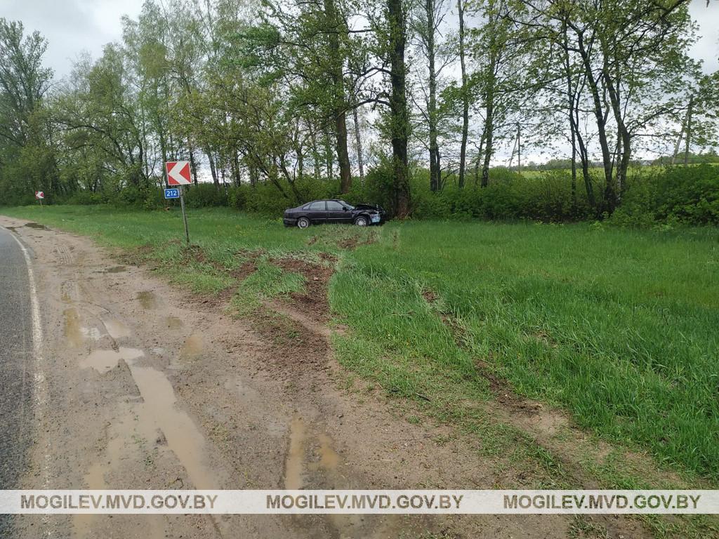 Водитель Honda в Бобруйском районе съехал в кювет и врезался в дерево – трое пострадавших