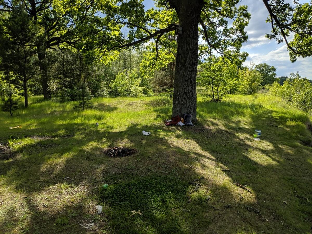 «Могут ли работники лесхоза парковать служебную машину на территории памятника природы?» - вопрос от читателя
